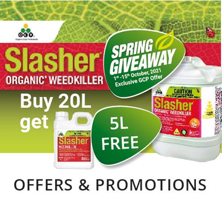 Slasher Spring Offer