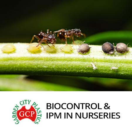 Biocontrol IPM in Nurseries