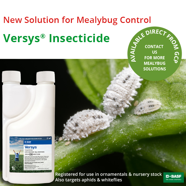 Versys® Insecticide
