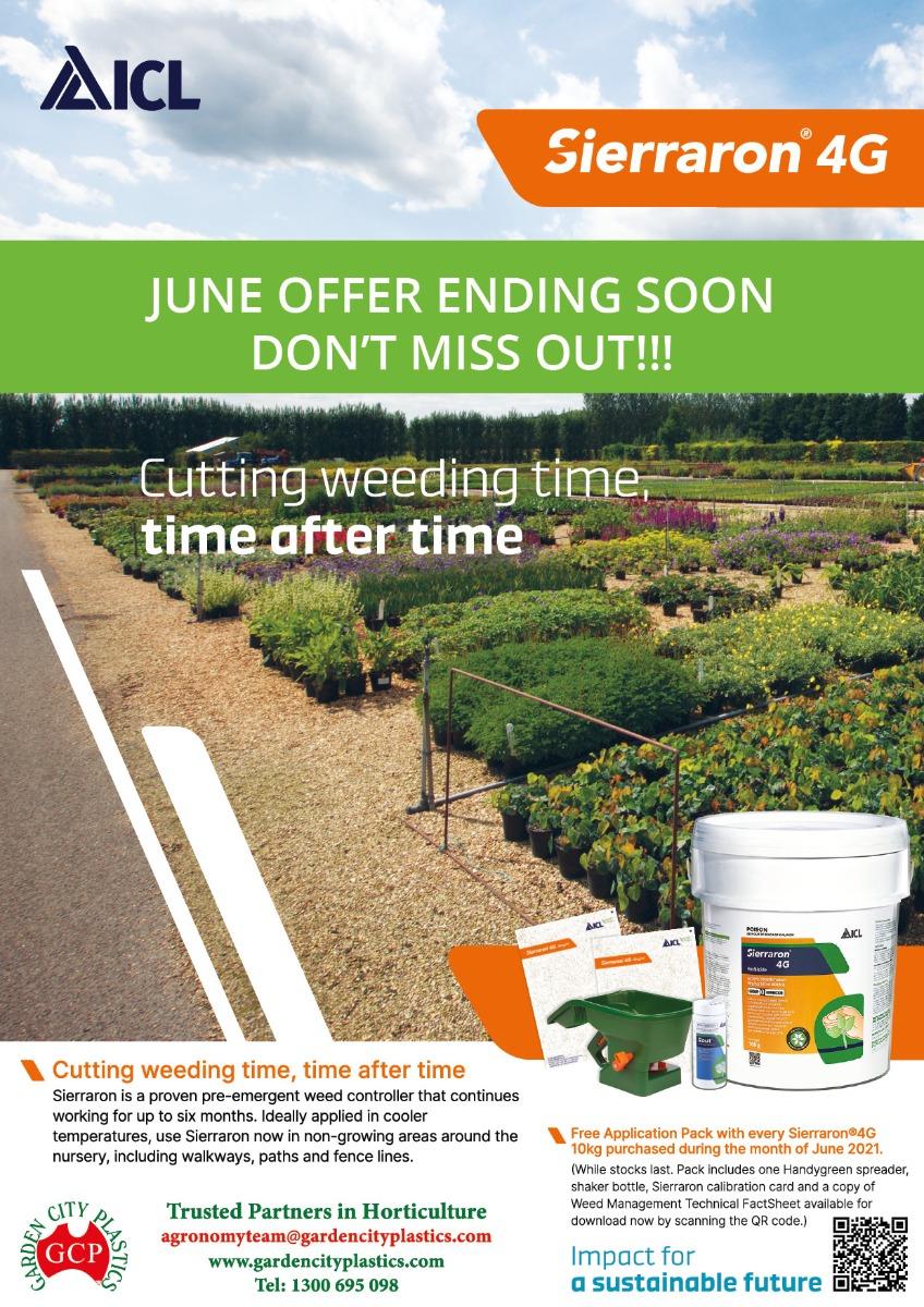 See Sierraron 4G Pre-emergent herbicide